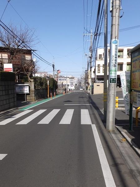 荒玉水道みち(荒玉水道道路)