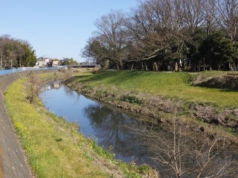 宮山大橋より目久尻川上流を望む
