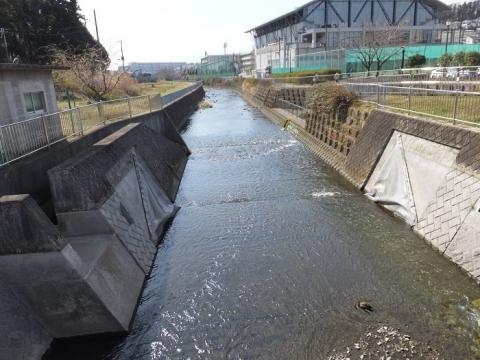 柏ヶ谷堰ファブリダム管理橋より目久尻川下流を望む