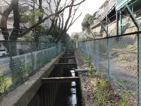 目久尻川・広野台1丁目