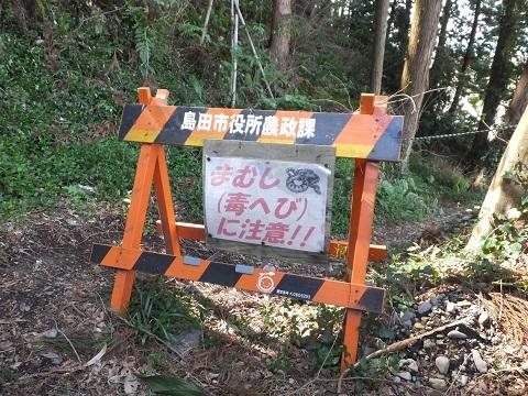 大井川蓬莱橋際マムシ注意看板