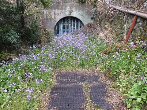 角田大橋前横須賀水道管路隧道入口