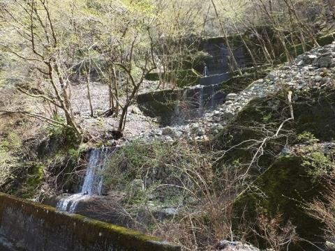 玄倉川沿い林道の谷止工