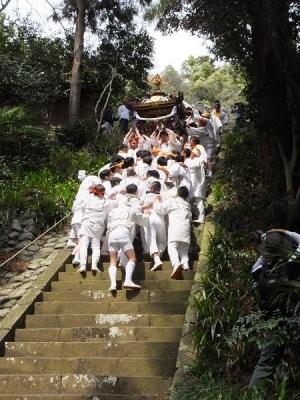 2017与瀬神社例大祭御神輿の急階段下り