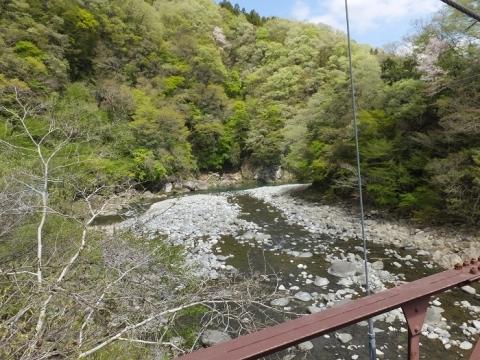 道志第二発電所管理橋・吊り橋より道志川下流を望む