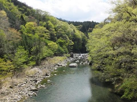 道志第二発電所管理橋・吊り橋より道志川上流を望む