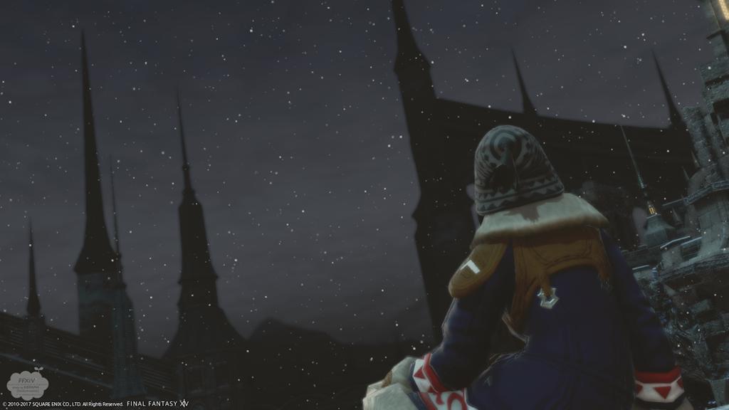 ひとり写真コンテスト『イシュガルドの静かな夜 LV1』【FF14】