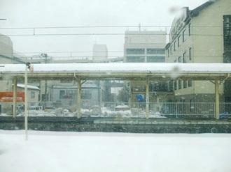 tsuruoka1.jpg