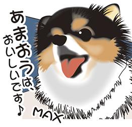 20170410img__m.jpg