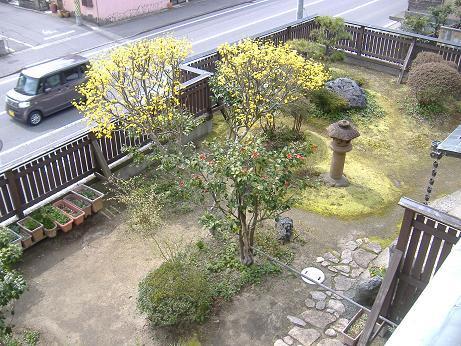 さんしゅゆ2f20170410