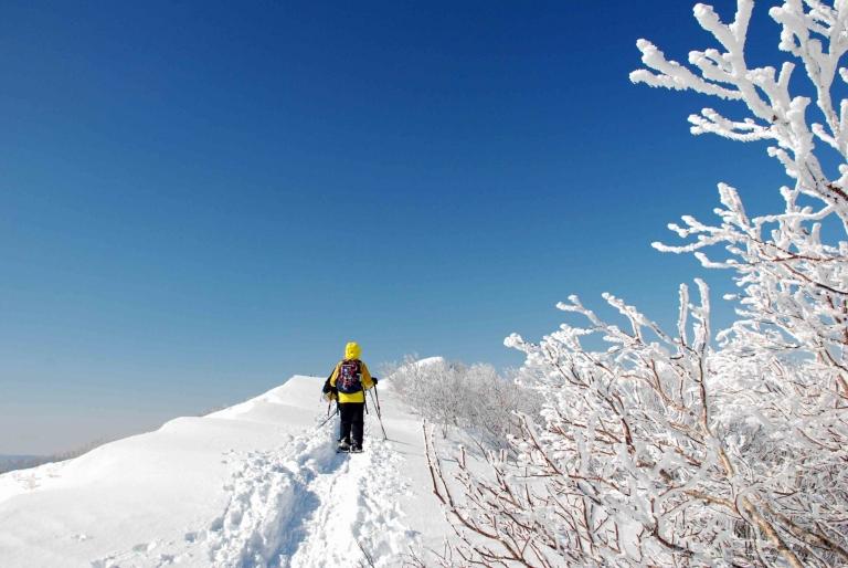 藻琴山 スノーシュー登山