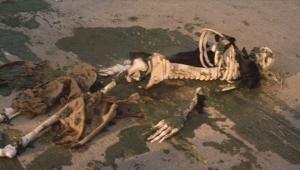 19 白骨死体