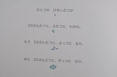 20170304 (9)