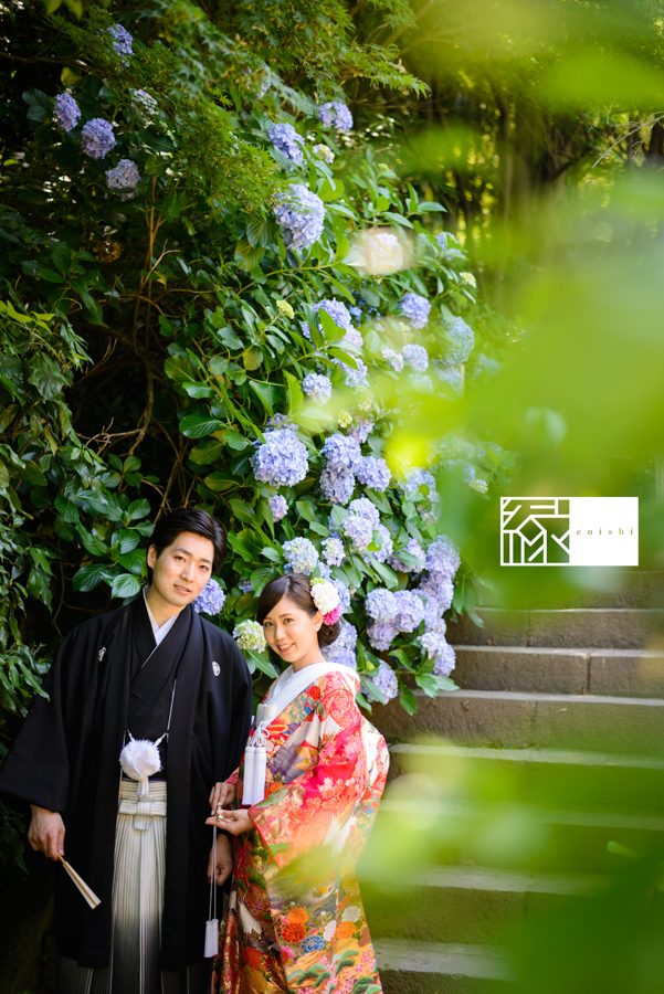 鎌倉紫陽花和装05