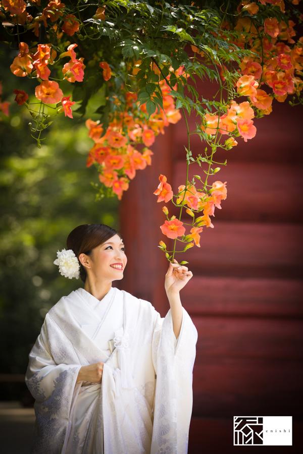鎌倉紫陽花和装07
