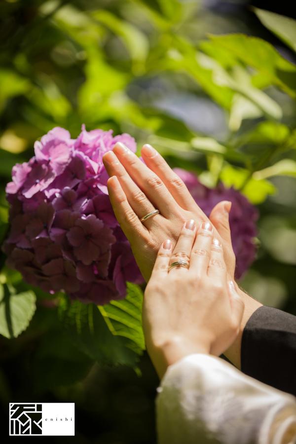 鎌倉紫陽花和装06