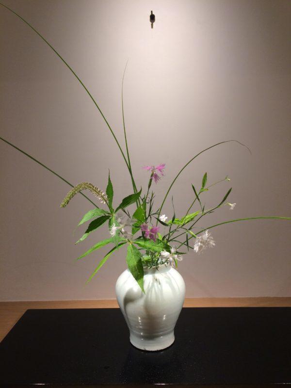 zzr 花:撫子・岡虎ノ尾・九蓋草・糸芒 器:分院壷