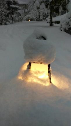 現在は雪が少し落ち着きました。tags[福井県]
