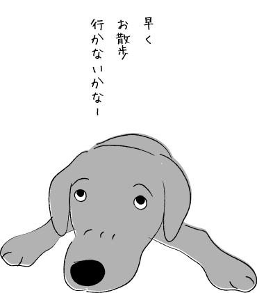 お散歩アピール