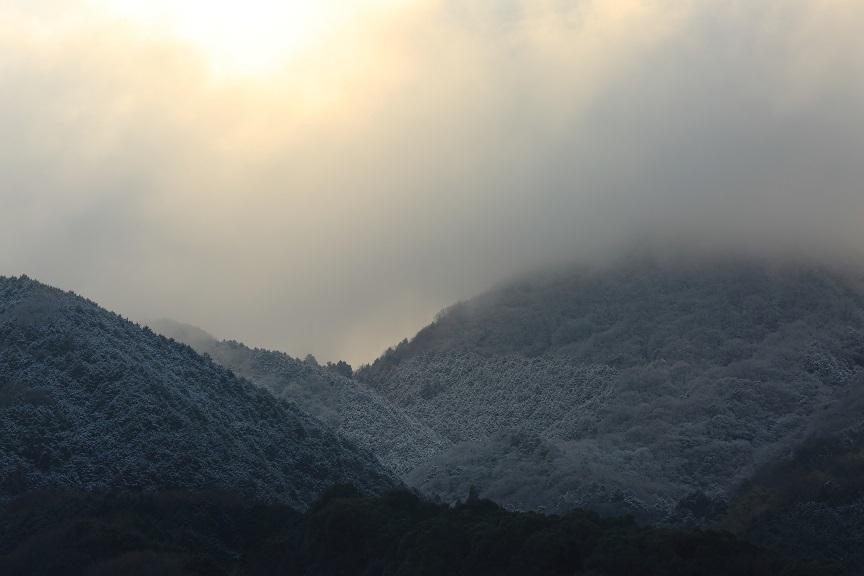 大雪、11