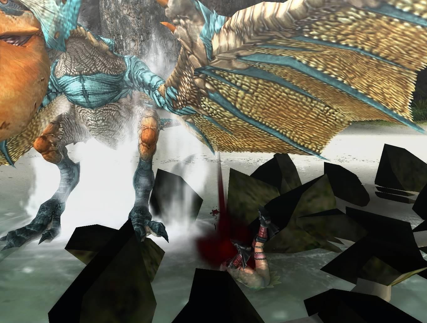 いくら入門飛竜の怪鳥とは言っても、下手したら殺される