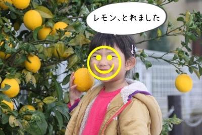 2016_11_26_0977.jpg