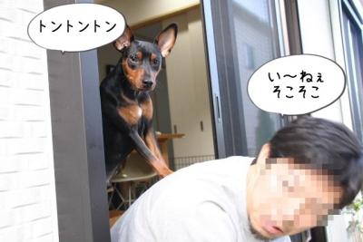 2016_12_04_1082.jpg