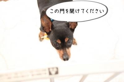 2016_12_23_1149.jpg