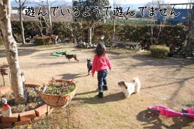 2016_12_24_1251.jpg