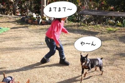 2016_12_24_1252.jpg