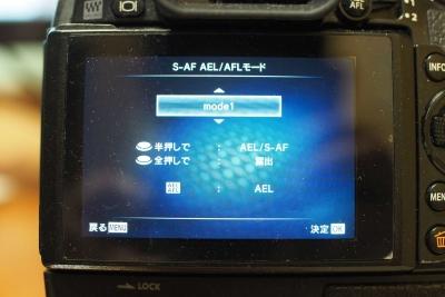 P3050003.jpg