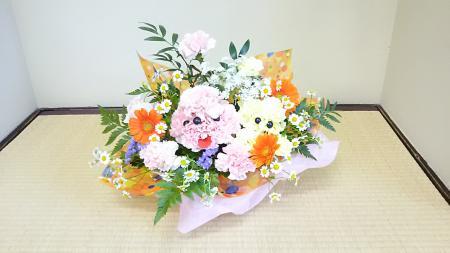 moblog_acf46404.jpg