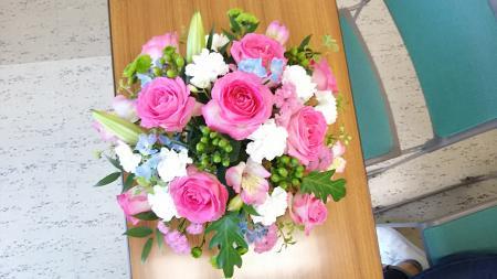 moblog_fe53b8d9.jpg