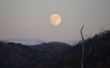 11・晩秋・大きな月