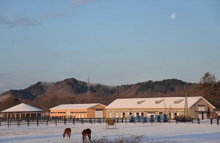 12・雪・朝の月