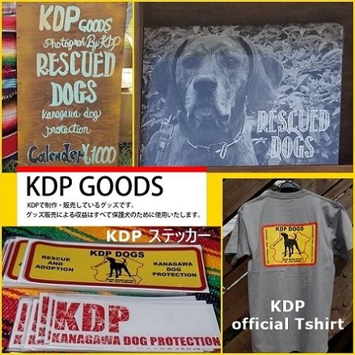 kdppp - コピー