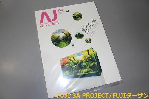 AJ259.jpg