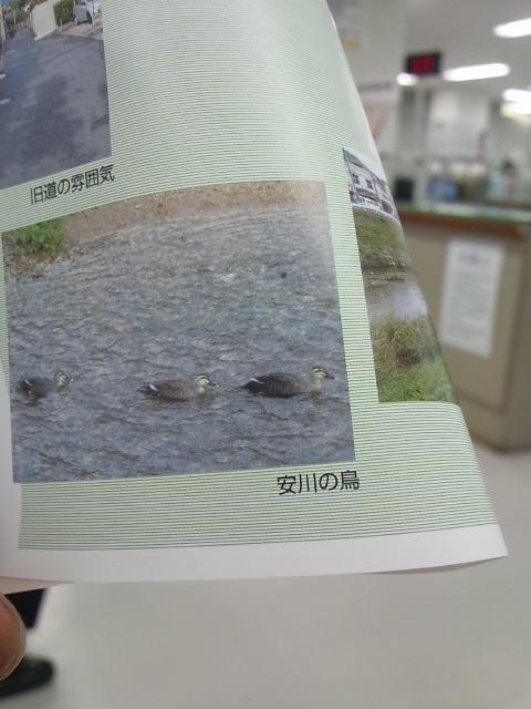 DVC170313kuyakusyo (3)