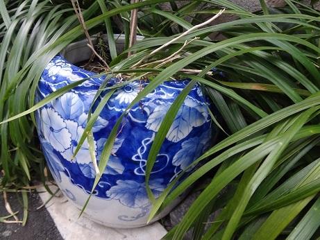 道端の藍染鉢