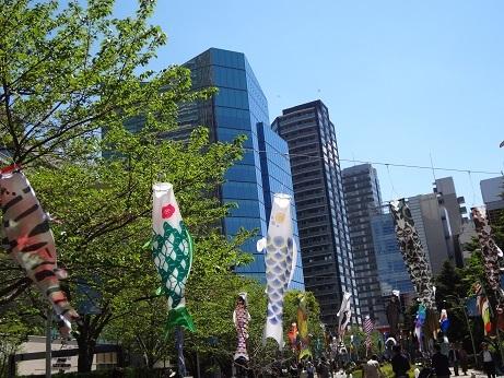 カラフル鯉のぼり3