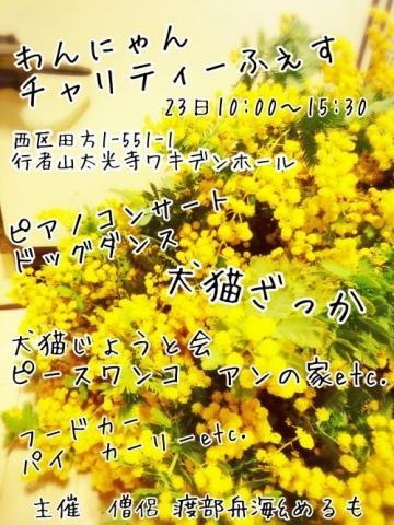 17-04-10-15-35-46-863_deco_convert_20170411072844.jpg