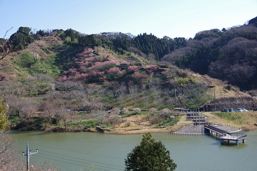 3-2佐久間ダム湖再