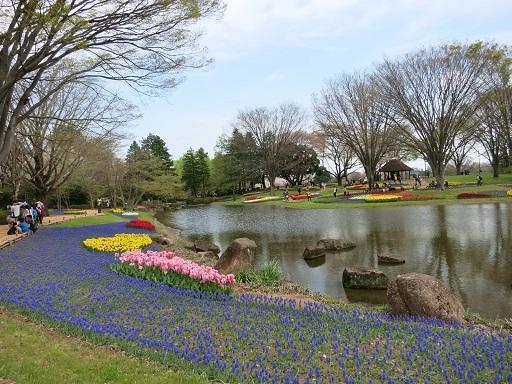 4-15公園景色