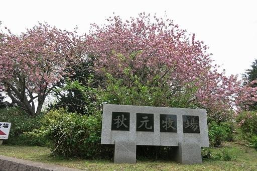 4-26秋元牧場入口