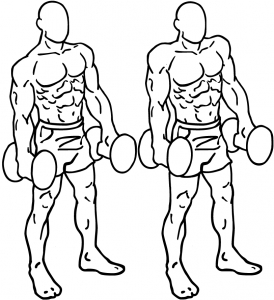 Dumbbell-shrugs-2-horz.jpg