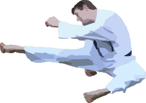 karate-42412_960_720.png