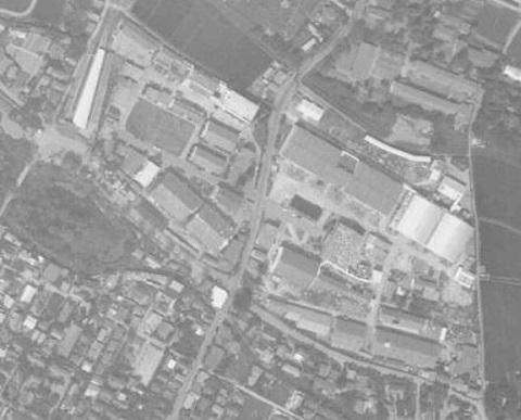 196108.jpg