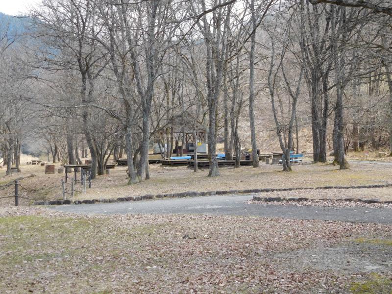 ss-キャンプ場 2