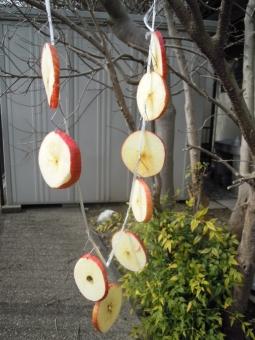 吊るして林檎170222