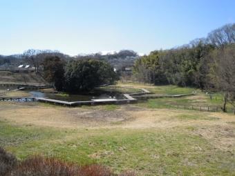 厳島湿生公園170225